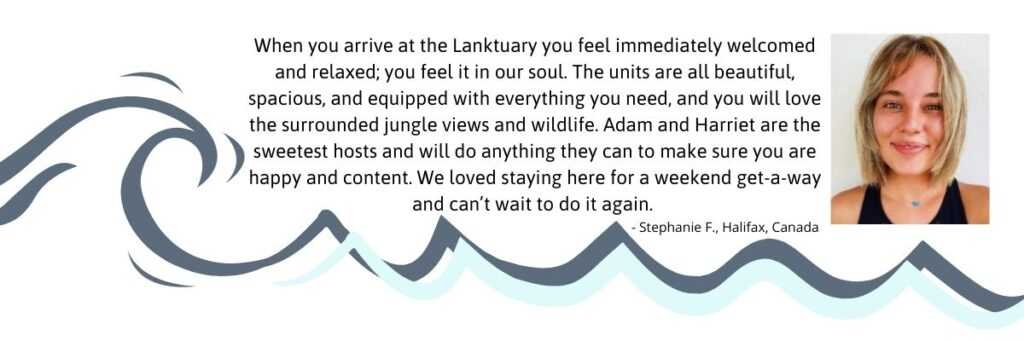 You will feel welcomed at The Lanktuary