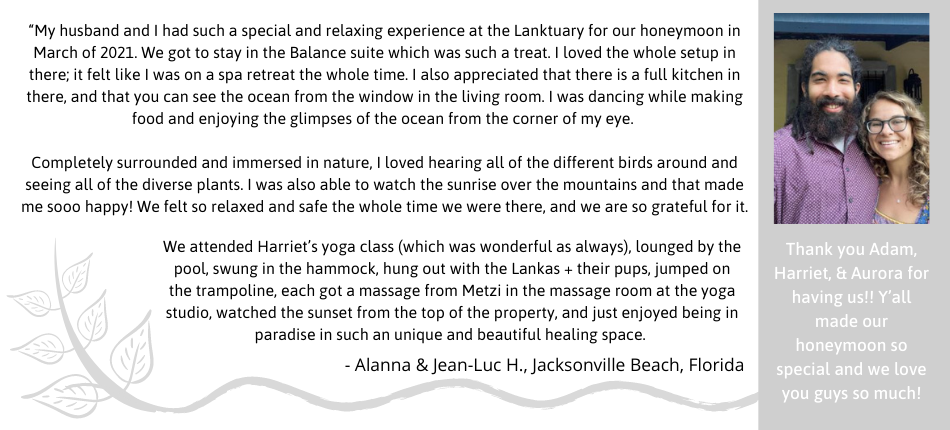 The Lanktuary review from 2021.